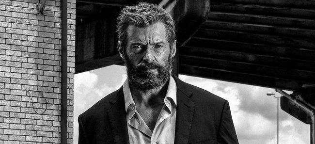 Logan-1.-Digital-Fox-Media